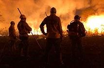 Gặp gỡ bộ tộc thầm lặng cứu rừng Amazon khỏi biển lửa
