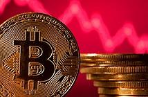 Giá Bitcoin hôm nay 8/9: Thị trường đỏ rực, Bitcoin giảm sập sàn