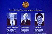 Thuốc cổ truyền Trung Quốc đã đoạt giải Nobel Y Học như thế nào?