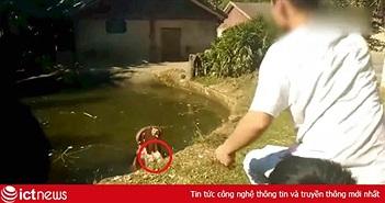 """Nam thanh niên Trung Quốc bị """"ném đá tơi bời"""" vì cho hà mã ăn túi ni lông"""