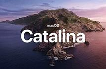 Apple phát hành macOS Catalina 10.15 chính thức