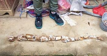 Trung Quốc: Đổ móng nhà, phát hiện vật quý hiếm 10.000 năm tuổi