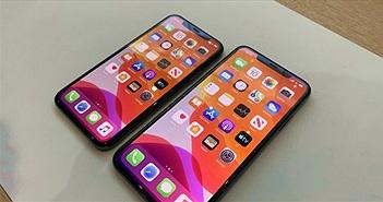 Có đến 5 mẫu iPhone được ra mắt vào năm 2020