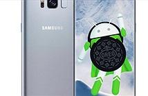 Galaxy S8 đã được cập nhật lên Android 8.0 Oreo