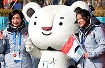 Olympic PyeongChang 2018: Số trường hợp nhiễm norovirus tăng nhanh