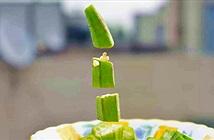 Thức ăn lơ lửng – Phát kiến mới để thu hút những người ham của lạ