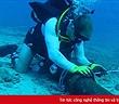 Cáp quang biển quốc tế AAG bắt đầu được sửa từ ngày 17/4