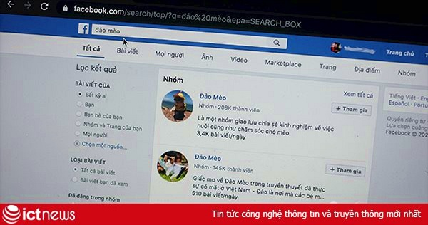 "Nhóm Đảo mèo trên Facebook vì sao bị ""bay mầu""?"