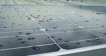 Pin năng lượng mặt trời tạo ra điện cả khi trời mưa
