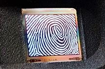 OLED Microdisplay sẽ mở đường cho máy quét vân tay mới?