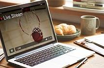 Bosch Việt Nam tổ chức chương trình live stream Điều bình thường mới