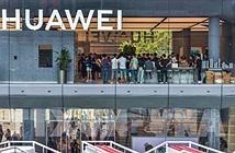 Mỹ cảnh báo Canada nếu Huawei được bật đèn xanh tham gia mạng 5G