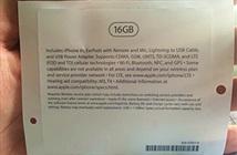 Tại sao Apple không loại bỏ iPhone 16GB?