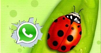Lỗi phần mềm WhatsApp ảnh hưởng hai trăm triệu người dùng