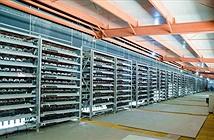 Công ty Nhật Bản đầu tư hơn 3 triệu USD để đào tiền ảo