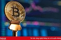 Giá Bitcoin hôm nay 9/9: Thị trường sập sàn, nhà đầu tư bỏ của chạy lấy người