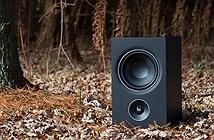 """Bookshelf PSB Alpha P5 – Một """"món hời"""" cho audiophile"""