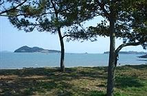 Giải mã hiện tượng biển tách làm đôi ở Hàn Quốc theo khoa học