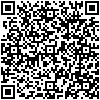 [Win 10 Mobile + PC] Mời dùng app xem phim tự tìm sub Perfect Movie và ứng dụng NhacCuaTui universal