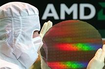 AMD bị kiện vì gian lận số nhân trong vi xử lý