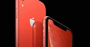 Bất ngờ với nguyên nhân khiến Apple cắt giảm sản lượng iPhone XR