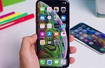 Điểm danh smartphone đáng mua nhất tháng 11