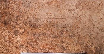 Các nhà khảo cổ Israel phát hiện nhiều hình chạm khắc 2.000 năm tuổi