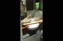 Đi tắm, khóc thét thấy sinh vật to đùng trên bồn rửa