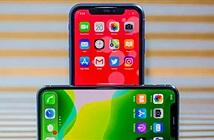 iPhone 11 và iPhone 11 Pro sau 2 tháng sử dụng liệu còn ngon?