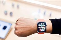 Cảnh sát tóm 2 tên trộm nhờ định vị của Apple Watch