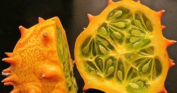 15 loại quả ở Việt Nam lọt vào danh sách 28 quả kỳ lạ nhất thế giới