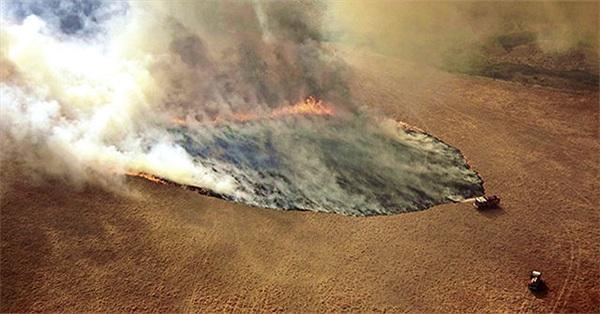 Khí carbon do cháy rừng ở Australia tương đương lượng khí thải cháy rừng Amazon