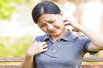 Vì sao cứ thấy người khác gãi là chúng ta lại ngứa ngáy?