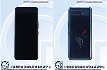 Asus ROG Phone 5 xuất hiện trên Geekbench với RAM 16GB