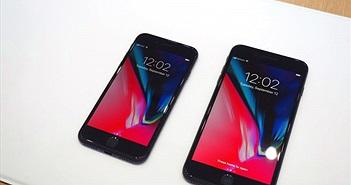 iPhone 8 thay màn hình không chính hãng sẽ bị khoá cảm ứng trong phiên bản iOS mới nhất