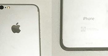 Đây có phải là mô hình iPhone 7: viền ăng-ten bỏ bớt, cổng Smart Connector, không có jack tai nghe?
