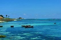 """Hội thảo """"CNTT-TT với biển, đảo Việt Nam sẽ diễn ra tại đảo Lý Sơn"""