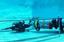 Clip: Cách tàu ngầm mini của tỷ phú Mỹ giải cứu đội bóng Thái Lan