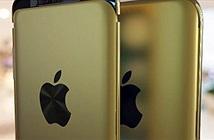 iPhone 9c đẹp thế này thì ifan cháy túi là bình thường
