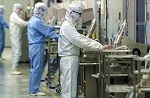 Samsung xây nhà máy sản xuất điện thoại lớn nhất thế giới