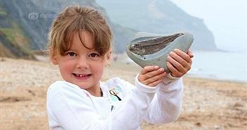 Đi dạo, bé 5 tuổi tìm được điều giới khoa học mong mỏi