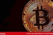 """Giới đầu tư bitcoin và tiền mật mã toàn cầu đã """"mất"""" 600 tỷ USD trong năm nay"""