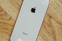 Những iPhone cũ được săn đón nhiều nhất hiện nay