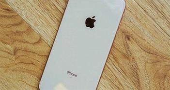"""Những iPhone cũ được """"săn đón"""" nhiều nhất hiện nay"""