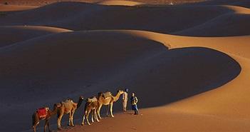 Sa mạc Sahara có thể biến thành nhà máy điện khổng lồ