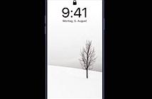 Chiêm ngưỡng iPhone 11 Pro phiên bản sao chép trắng trợn Samsung Galaxy S10