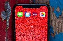 iPhone 11 sẽ phải đối diện với những thách thức nào?