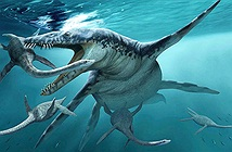 Quái vật đại dương khổng lồ nặng 40 tấn, đối thủ đáng gờm nhất của siêu cá mập Megalodon