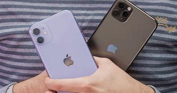 iPhone 12 và iPhone 12 Pro có khiến iFan thao thức?