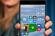Lịch cập nhật Windows 10 Mobile cho Lumia đời cũ